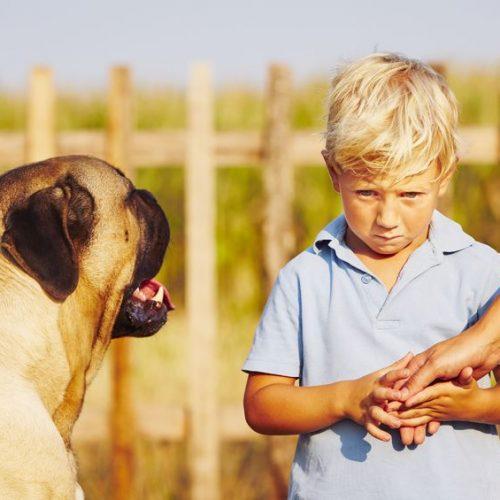 Czym jest obniżona wrażliwość na bodźce sensoryczne?