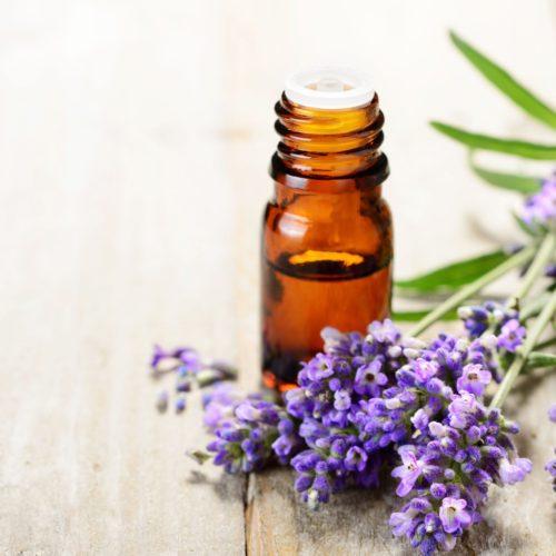 Olej żywokostowy z gojnikiem – Właściwości lecznicze i zastosowanie