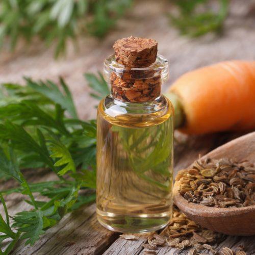 Olej z nasion dzikiej marchwi – Właściwości i zastosowanie