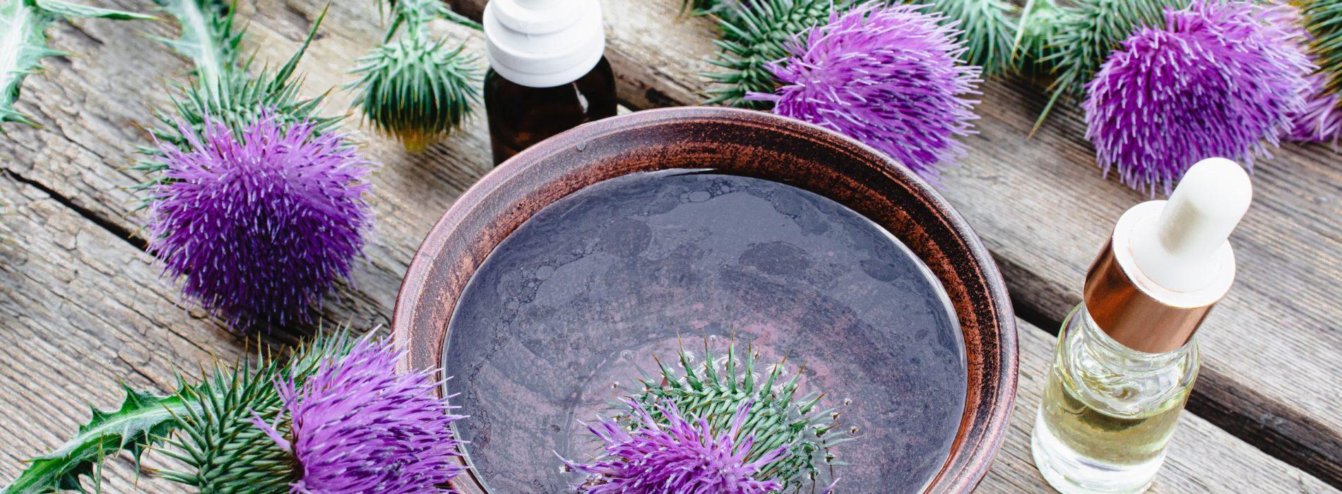 Olej z ostropestu na wątrobę a jej zdrowie – Wady i zalety