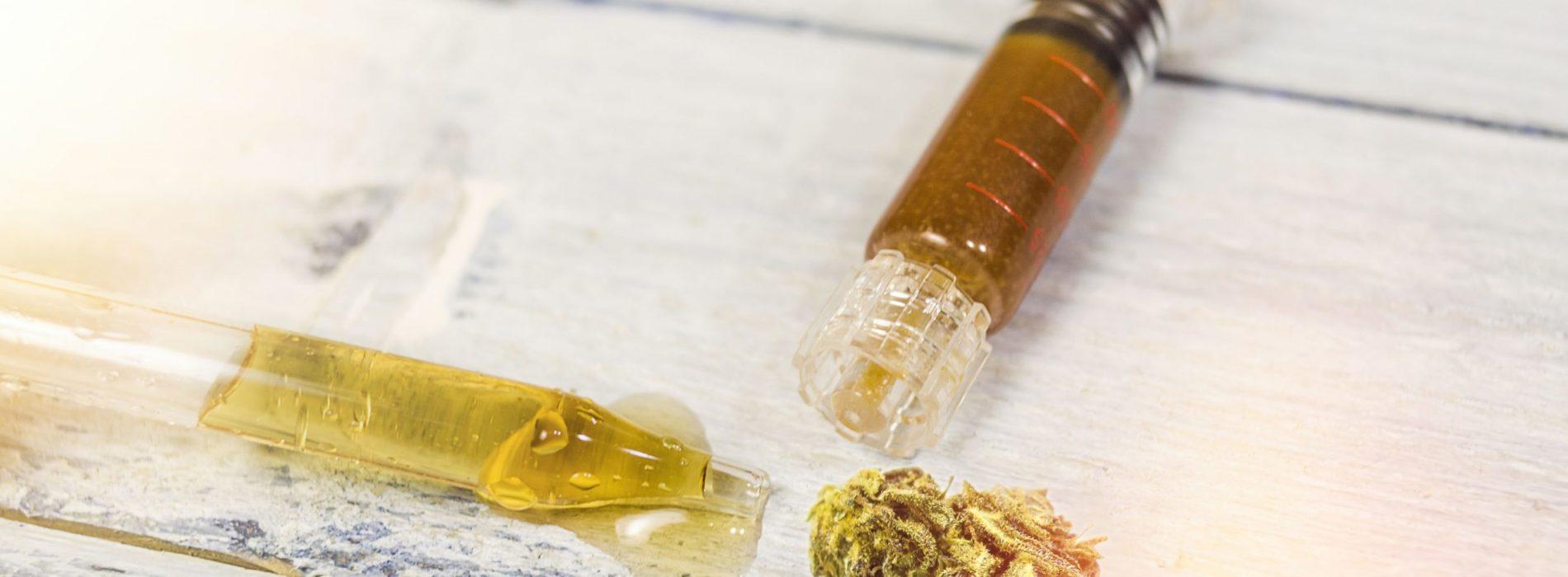 Pasta czy olejek z konopi – czym się różnią i co jest lepsze?